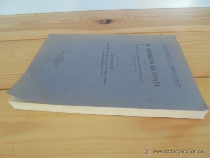 Libros de segunda mano: INSTITUTO GEOLOGICO Y MINERO DE ESPAÑA 7 TOMOS. MAPA GEOLOGICO DE ESPAÑA HOJA DE CANTILLANA. VER FOT - Foto 145 - 50677268