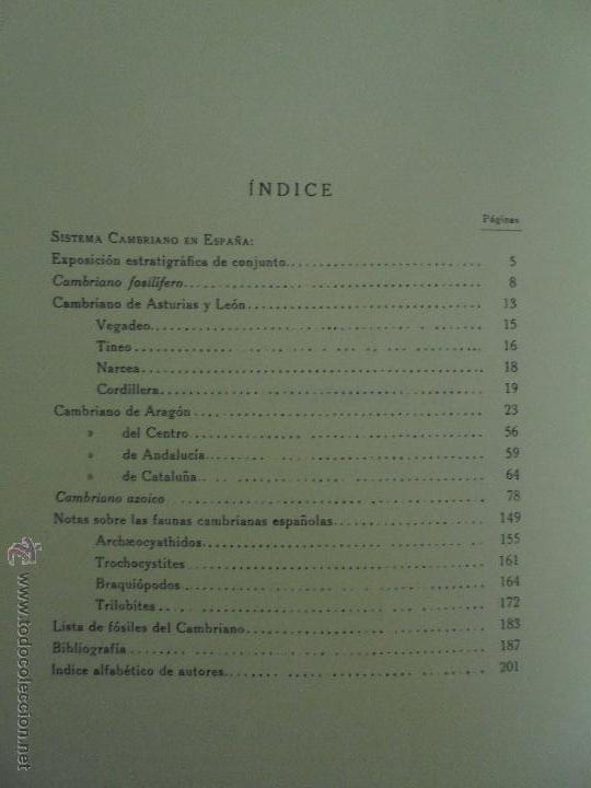 Libros de segunda mano: INSTITUTO GEOLOGICO Y MINERO DE ESPAÑA 7 TOMOS. MAPA GEOLOGICO DE ESPAÑA HOJA DE CANTILLANA. VER FOT - Foto 149 - 50677268