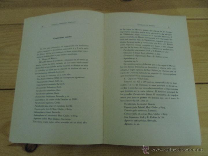 Libros de segunda mano: INSTITUTO GEOLOGICO Y MINERO DE ESPAÑA 7 TOMOS. MAPA GEOLOGICO DE ESPAÑA HOJA DE CANTILLANA. VER FOT - Foto 150 - 50677268