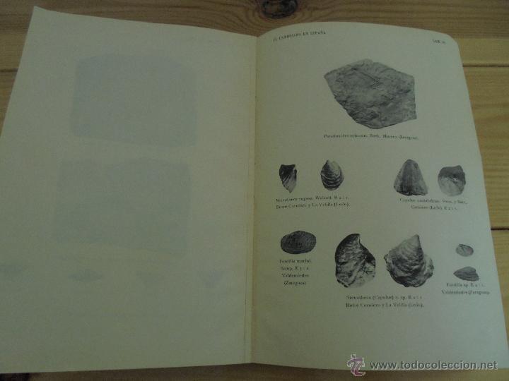 Libros de segunda mano: INSTITUTO GEOLOGICO Y MINERO DE ESPAÑA 7 TOMOS. MAPA GEOLOGICO DE ESPAÑA HOJA DE CANTILLANA. VER FOT - Foto 155 - 50677268