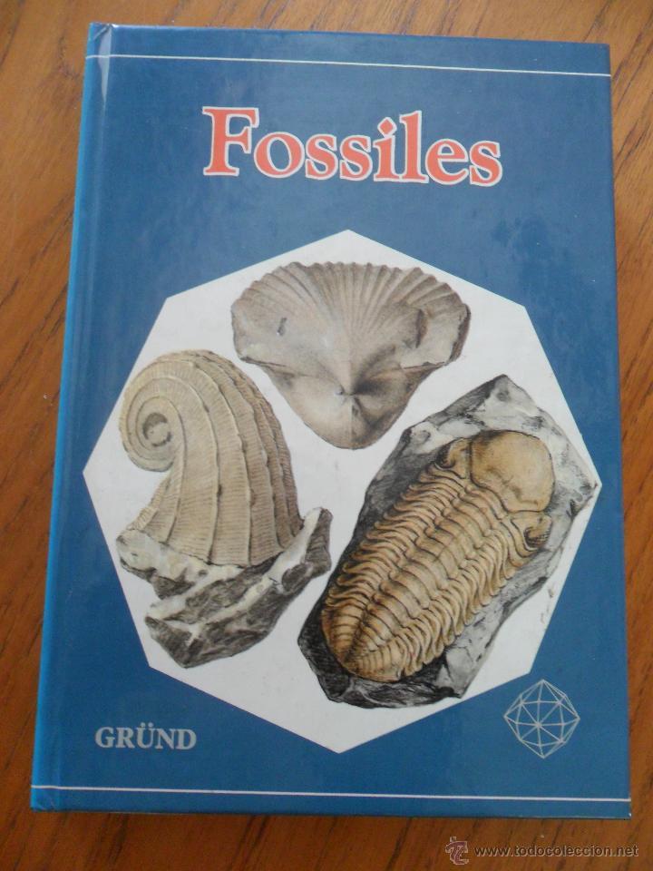 FOSSILES. RUDOLFF PROKOP. ED. GRÜND 1981 (Libros de Segunda Mano - Ciencias, Manuales y Oficios - Paleontología y Geología)