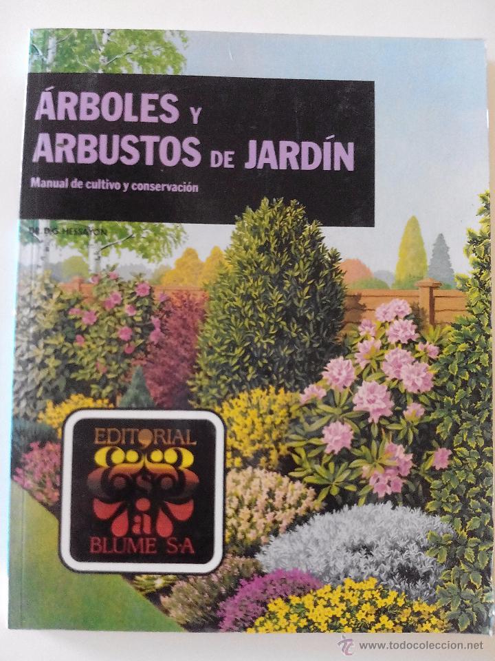 Arbustos de jardin excellent arbustos en flor with for Arbustos de jardin