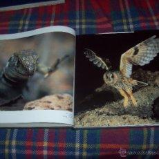 Libros de segunda mano: FAUNA CANARIA.SECRETOS DE EVOLUCIÓN.PUBLICACIONES TURQUESA. 2003. EXCELENTE EJEMPLAR.ÚNICO EN TC!!!!. Lote 51634284