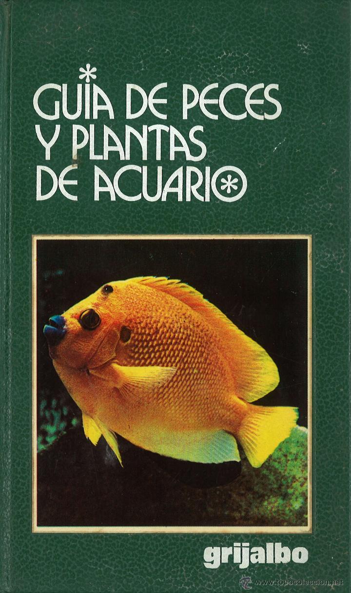 Gu a de peces y plantas de acuario comprar libros de for Peces de acuario