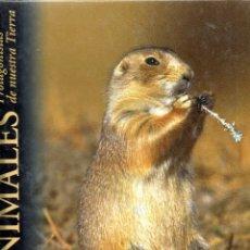 Libros de segunda mano: . LIBRO LOS ANIMALES PROTAGONISTAS DE NUESTRA TIERRA PRADERAS Y ESTEPAS . Lote 53056469