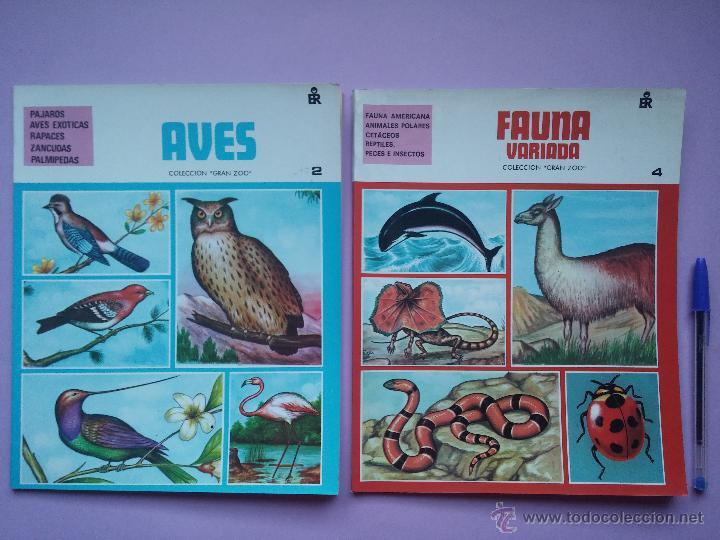 Libros de segunda mano: LOTE DE 3 LIBROS COLECCION GRAN ZOO, AVES, FAUNA SALVAJE Y FAUNA VARIADA, EDITORIAL ROMA,1980 - Foto 2 - 53119559