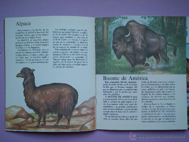 Libros de segunda mano: LOTE DE 3 LIBROS COLECCION GRAN ZOO, AVES, FAUNA SALVAJE Y FAUNA VARIADA, EDITORIAL ROMA,1980 - Foto 6 - 53119559