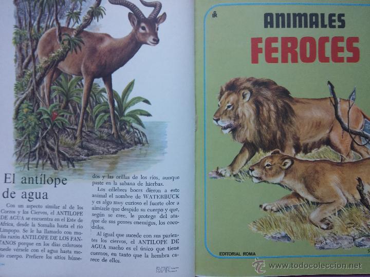 Libros de segunda mano: LOTE DE 3 LIBROS COLECCION GRAN ZOO, AVES, FAUNA SALVAJE Y FAUNA VARIADA, EDITORIAL ROMA,1980 - Foto 7 - 53119559