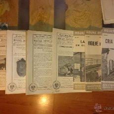 Libros de segunda mano: HOJAS DIVULGADORAS MINISTERIO DE AGRICULTURA 220 EJEMPLARES DESDE EL AÑO 1941 HASTA 1954. Lote 53206749