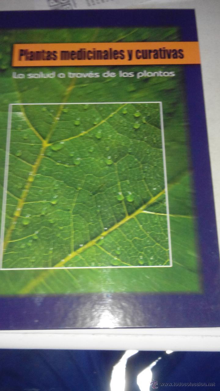 PLANTAS MEDICINALES - LA SALUD A TRAVES DE LAS PLANTAS (Libros de Segunda Mano - Ciencias, Manuales y Oficios - Biología y Botánica)