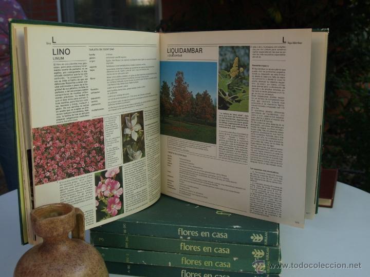 Flores en casa enciclopedia de jardineria ord comprar - Libros sobre jardineria ...