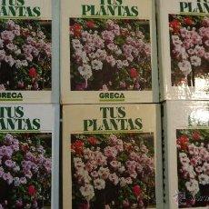 Libros de segunda mano: TUS PLANTAS DE GRECA 6 FICHEROS - SARPE - 1989. Lote 53735945