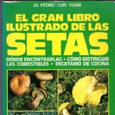 Libros de segunda mano - VIANI : EL GRAN LIBRO ILUSTRADO DE LAS SETAS (DE VECCHI, 1988) - 100391020