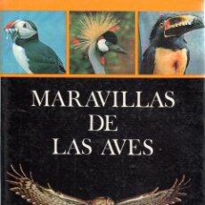 Libros de segunda mano: . LIBRO COLECCCION NATURALEZA Y VIDA MARAVILLAS DE LAS AVES . Lote 54348143