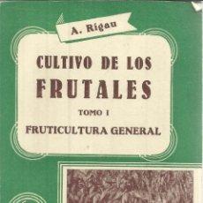 Libros de segunda mano: CULTIVO DE LOS FRUTALES. TOMO I. A. RIGAU. EDITORIAL SINTE. BARCELONA. 1963. Lote 54365385
