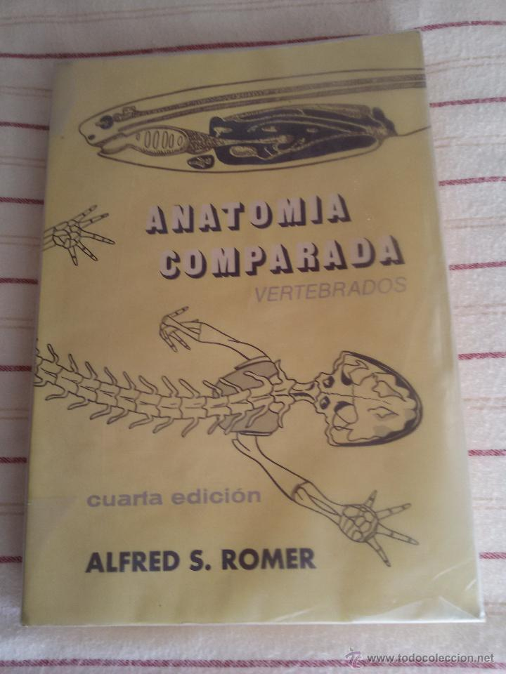 anatomía comparada -vertebrados-4ª edición-1975 - Comprar Libros de ...