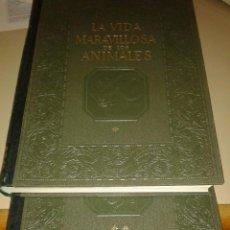 Livres d'occasion: LA MARAVILLOSA VIDA DE LOS ANIMALES. GALLACH. Lote 226990770