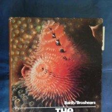 Libros de segunda mano: THE INVERTEBRATE WORLD - BARTH/BROSHEARS INVERTEBRADOS - BIOLOGIA. Lote 56008098
