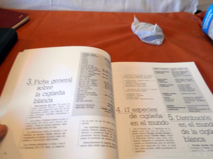 Libros de segunda mano: Hermoso estudio sobre la cigüeña blanca - Foto 3 - 55813387