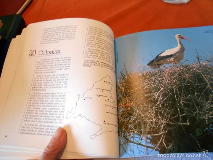 Libros de segunda mano: Hermoso estudio sobre la cigüeña blanca - Foto 6 - 55813387
