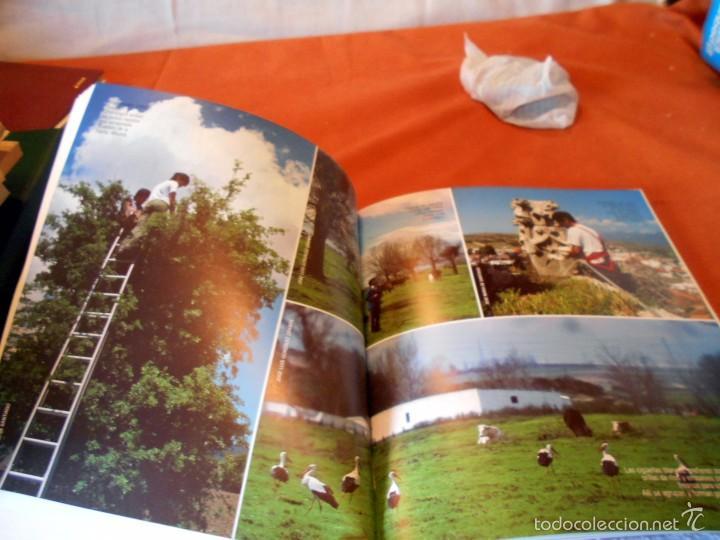 Libros de segunda mano: Hermoso estudio sobre la cigüeña blanca - Foto 7 - 55813387