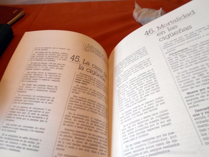 Libros de segunda mano: Hermoso estudio sobre la cigüeña blanca - Foto 9 - 55813387