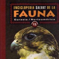 Libros de segunda mano: ENCICLOPEDIA SALVAT DE LA FAUNA Nº 12 EURASIA/NORTEAMERICA,R HOLARTICA. FELIX RODRIGUEZ DE LA FUENTE. Lote 55932569