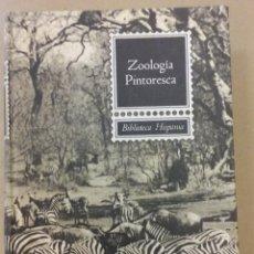 Libros de segunda mano: ZOOLOGIA PINTORESCA. ANGEL CABRERA. ED. SOPENA, 1962. BIBLIOTECA HISPANIA.. Lote 55941087
