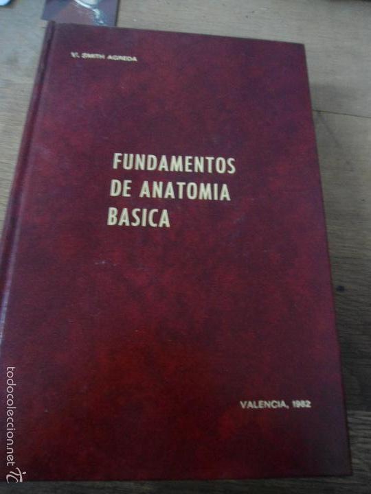 libro fundamentos de anatomia basica v. smith a - Comprar Libros de ...