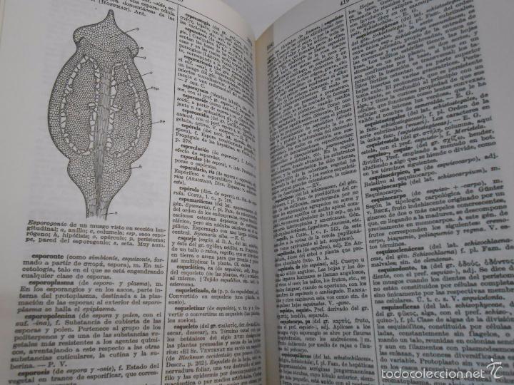 Diccionario De Botanica. Dr. P. Font Quer. Edit