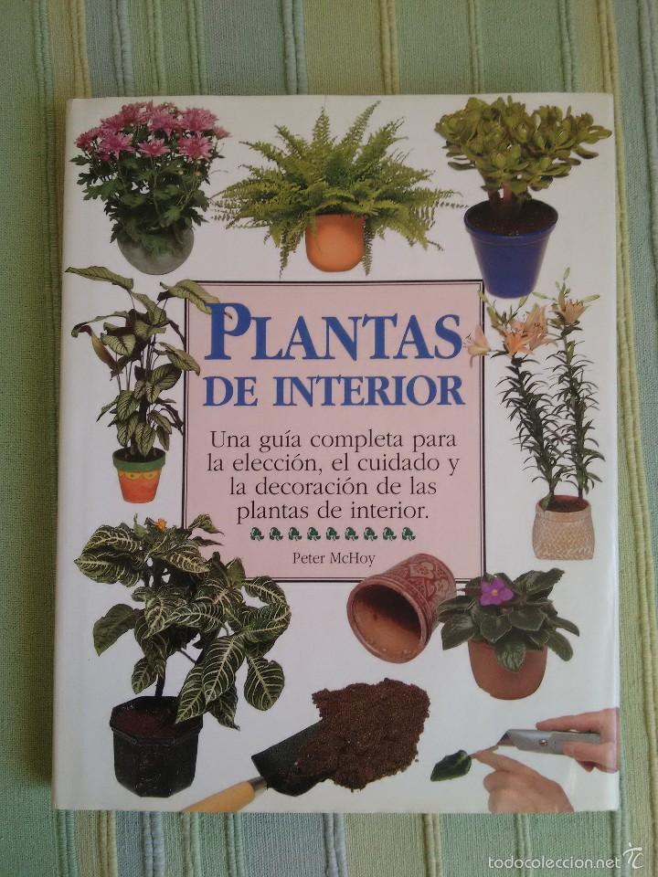 PLANTAS DE INTERIOR. PETER MCHOY. (Libros de Segunda Mano - Ciencias, Manuales y Oficios - Biología y Botánica)