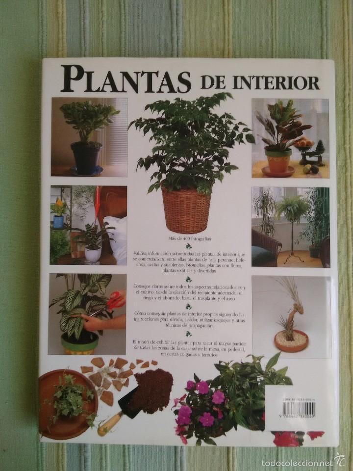 Libros de segunda mano: PLANTAS DE INTERIOR. Peter McHoy. - Foto 2 - 56551440