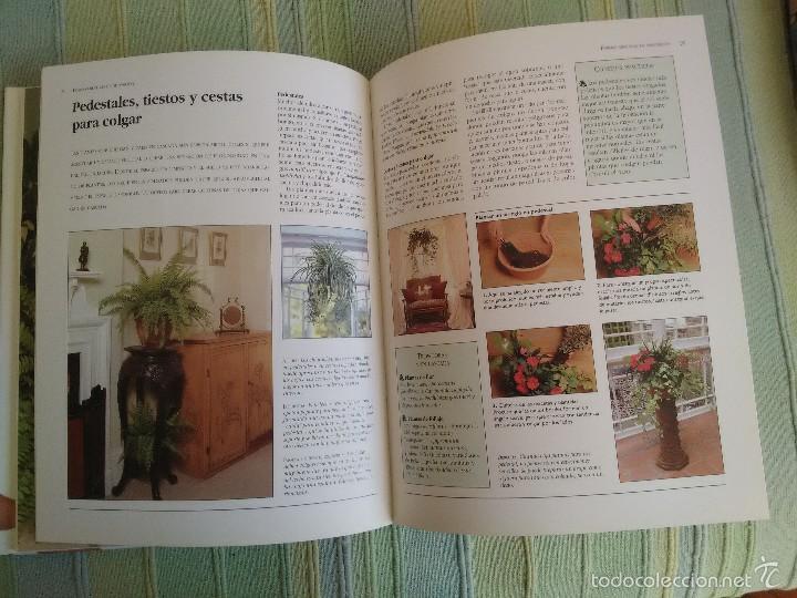 Libros de segunda mano: PLANTAS DE INTERIOR. Peter McHoy. - Foto 3 - 56551440