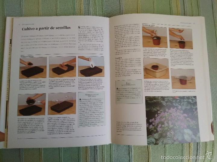 Libros de segunda mano: PLANTAS DE INTERIOR. Peter McHoy. - Foto 5 - 56551440