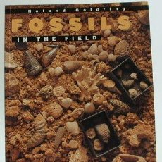 Libros de segunda mano: LIBRO: FOSSILS IN THE FIELD: INFORMATION POTENCIAL AND ANALYSIS. ROLAND GOLDRING. YEAR 1991. 218 PP.. Lote 56711836