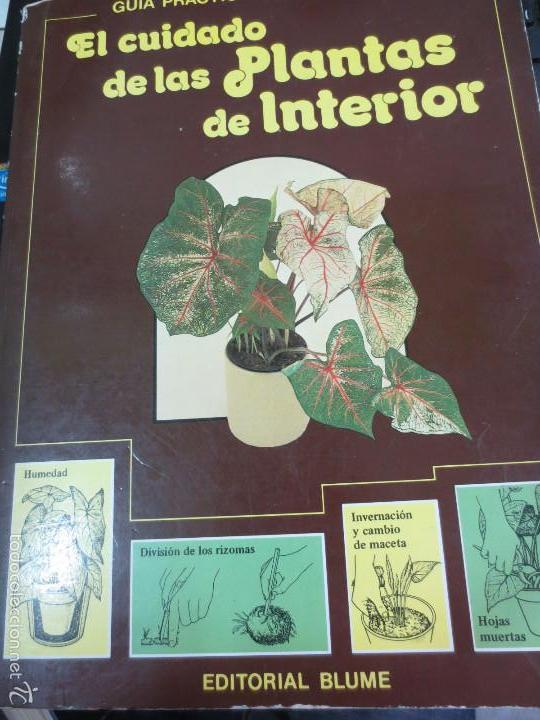 GUÍA PRÁCTICA ILUSTRADA PARA EL CUIDADO DE LAS PLANTAS DE INTERIOR EDIT BLUME (Libros de Segunda Mano - Ciencias, Manuales y Oficios - Biología y Botánica)