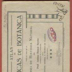 Libros de segunda mano: ATLAS DE PRÁCTICAS DE BOTÁNICA CÁTEDRA DE HISTORIA NATURAL ANTIMO BOSCÁ SEYTRE 24 HOJAS LE955. Lote 56955807