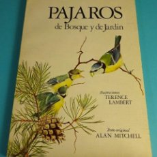 Libros de segunda mano - PÁJAROS DE BOSQUE Y DE JARDÍN. TEXTOS: ALAN MITCHELL. ILUSTRACIONES: TERENCE LAMBERT - 57439780