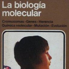 Libros de segunda mano: LA BIOLOGÍA MOLECULAR. CROMOSOMAS - GENES- HERENCIA - QUÍMICA MOLECULAR - MUTACIÓN - EVOLUCIÓN. Lote 57530476
