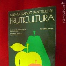 Libros de segunda mano - NUEVO TRATADO PRACTICO DE FRUTICULTURA - G. DE RAVEL & R. BALLOT - ED BLUME - RUSTICA 535 PAG. - 57557414