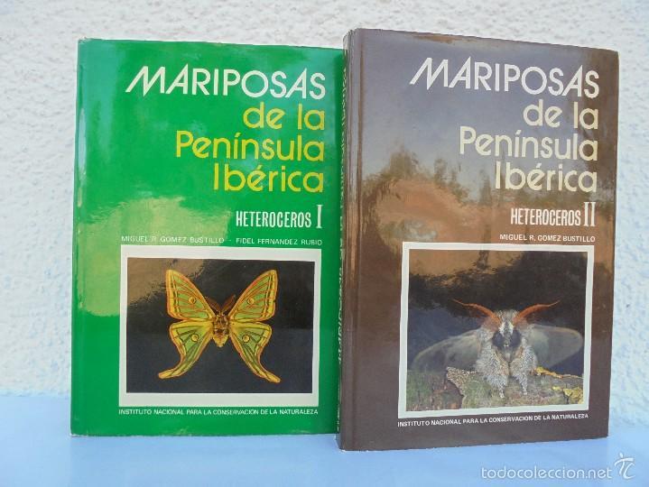 Mariposas de la peninsula iberica heteroceros i comprar for La iberica precios