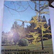 Libros de segunda mano: VALORACIÓN DEL PAISAJE NATURAL. LILLO-RAMOS.. Lote 58189194