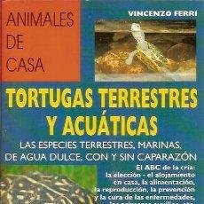 Libros de segunda mano: ANIMALES DE CASA TORTUGAS TERRESTRES Y ACUATICAS VINCENZO FERRI EDITORIAL DE VECCHI. Lote 58430363