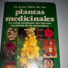Libros de segunda mano: EL GRAN LIBRO DE LAS PLANTAS MEDICINALES EVEREST M PAHLOW. Lote 83888931