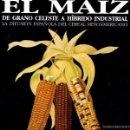 Libros de segunda mano: LÓPEZ LINAGE : EL MAÍZ, DE GRANO CELESTE A HÍBRIDO INDUSTRIAL (1996) GRAN FORMATO, MUY ILUSTRADO. Lote 61125151