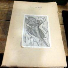 Libros de segunda mano: RELACION HISTORICA DEL VIAGE A LOS REYNOS DEL PERU Y CHILE.1777-1788- HIPOLITO RUIZ - 1952 - TOMO 1. Lote 61235423