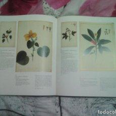 Libros de segunda mano: LIBRO LA NATURALEZA EN LA EXPEDICION DE MALASPINA Y BUSTAMANTE 30X25 CMS 286 FOTOS COLOR 1900 GRS. Lote 104783606