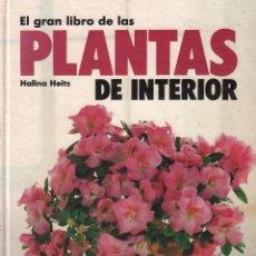 Libros de segunda mano: EL GRAN LIBRO DE LAS PLANTAS DE INTERIOR - HALINA HEITZ / MUNDI-1848. Lote 64443671