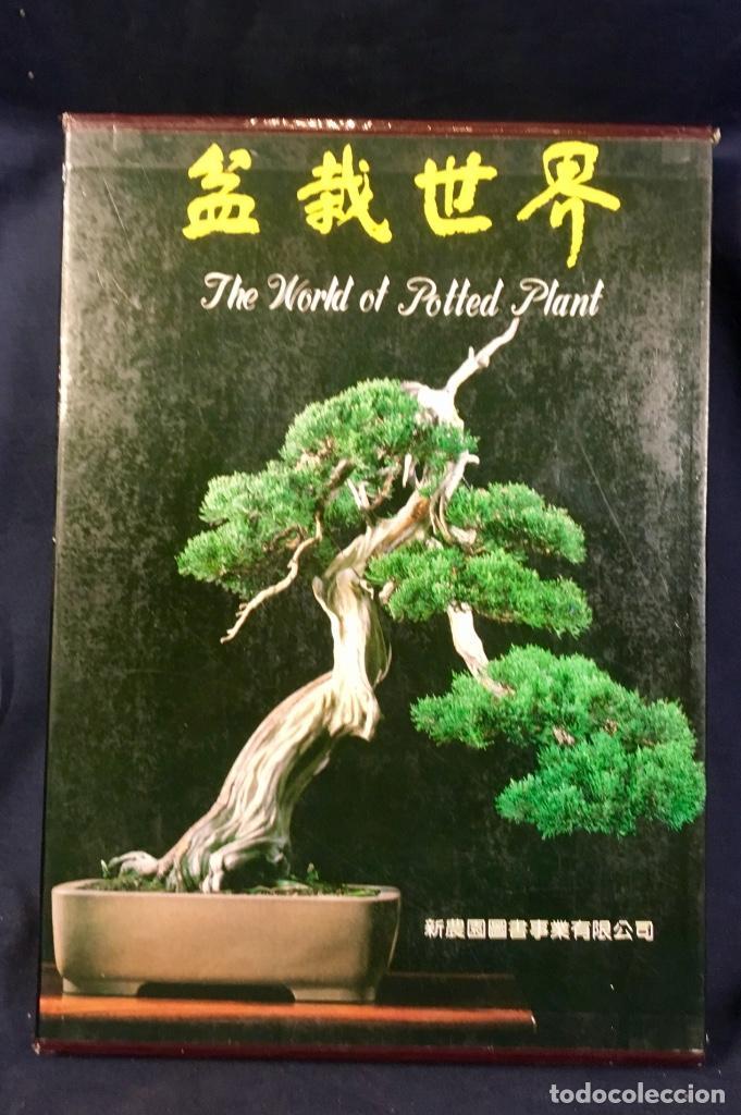 the world of potted plant plantas maceta bonsai - comprar libros