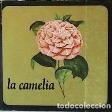 Livres d'occasion: RECOPILACIÓN DE TRABAJOS SOBRE LA CAMELIA. - VV. AA.-. Lote 59120205